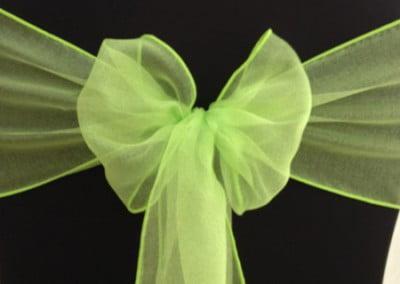 Lime Organza Sash